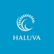 HALUVA Group Marketing Agency